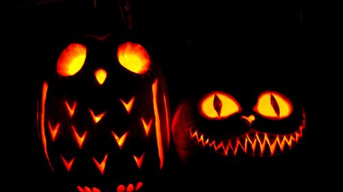 Amazing jack o lanterns the lowdown