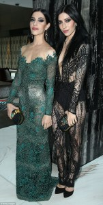 the veronicas aria 2014